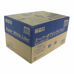 B5 Paper for Super White Lilac PPC 10 Bundles