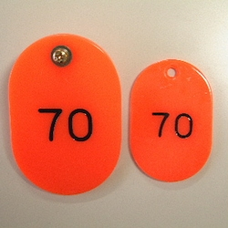 Parent/Child Tags, Continuous Numbers 51-100 Red