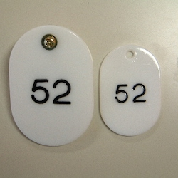Parent/Child Tags, Continuous Numbers 51-100 White