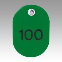 Parent/Child Tags, Continuous Numbers 51-100 Green