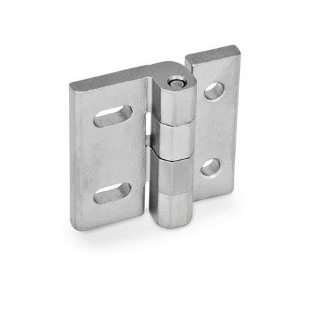 Stainless Steel-Hinges, adjustable (GN 235)